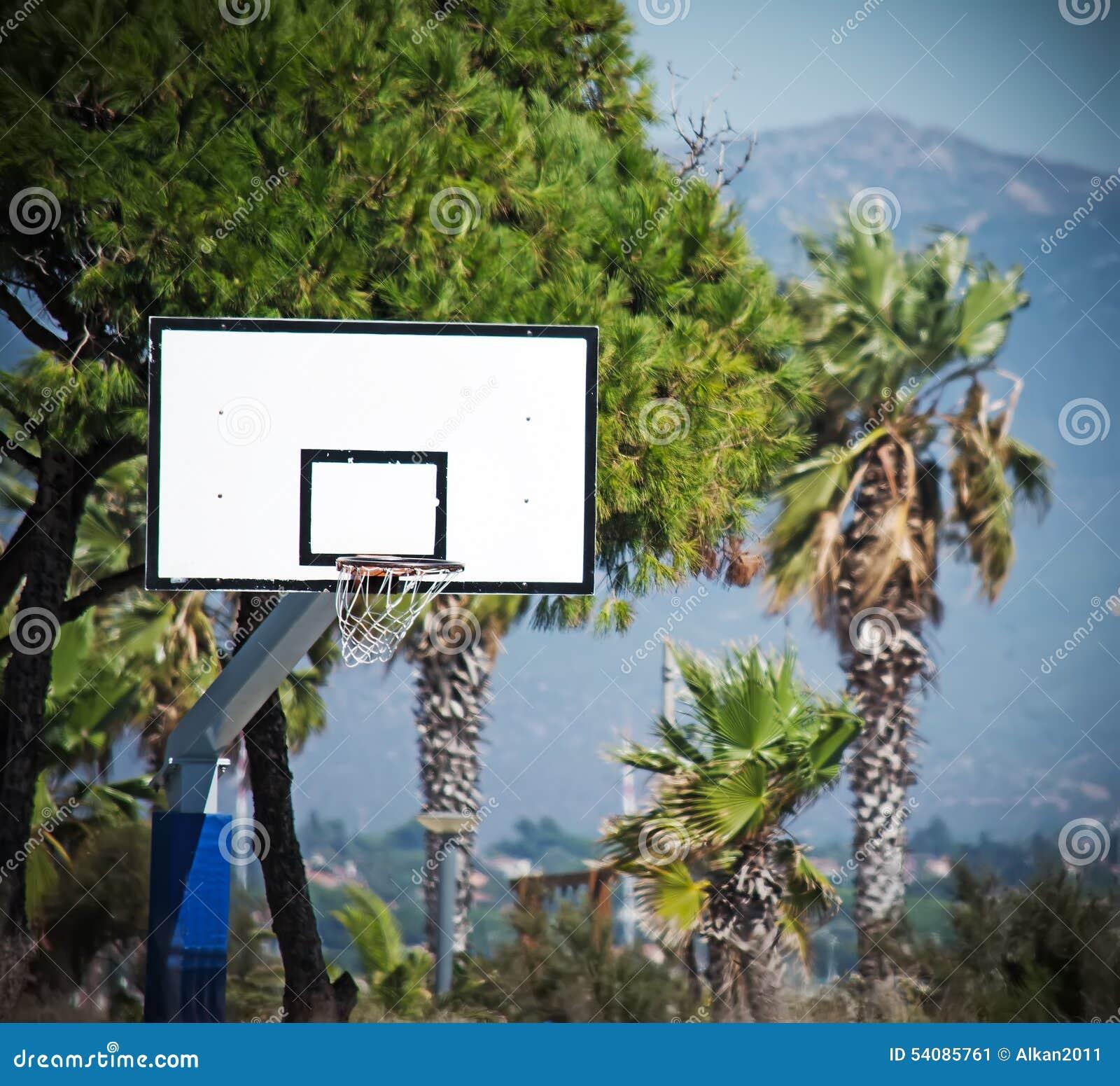 Basketbalhoepel in een groen park
