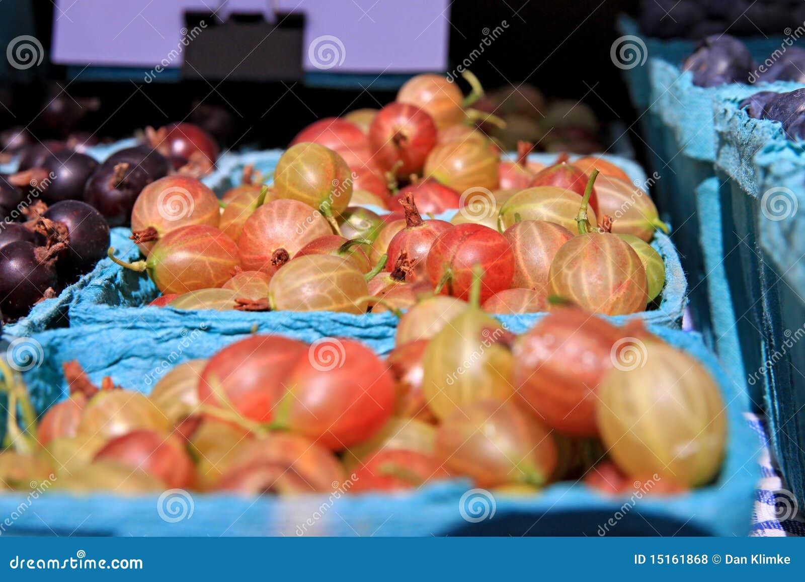 Gooseberries Fresh Food Market Images