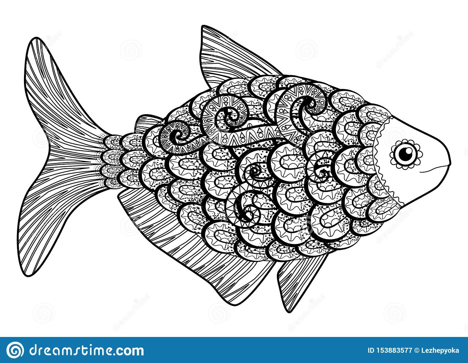 - Bass Fish With High Details. Stock Vector - Illustration Of Happy