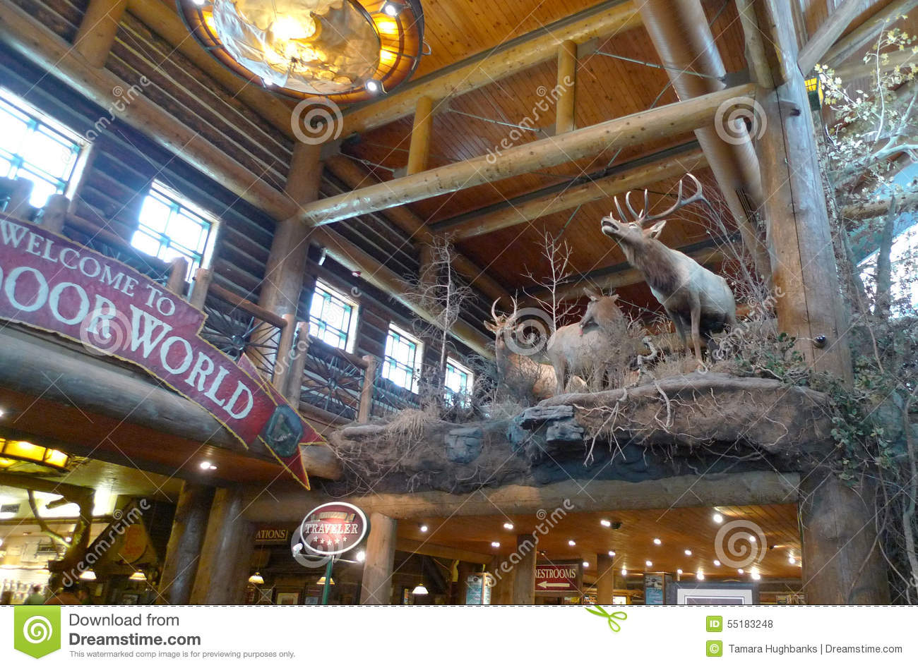 Bass pro shops springfield missouri taxidermy editorial for Bass pro shop fishing license
