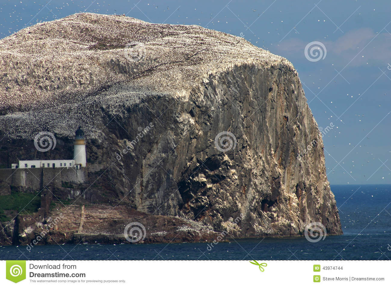 Bass Rock, Scotland