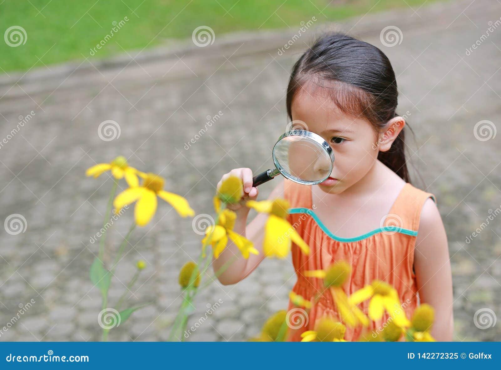 Bastante poca muchacha asiática del niño con miradas de la lupa en la flor en parque del verano
