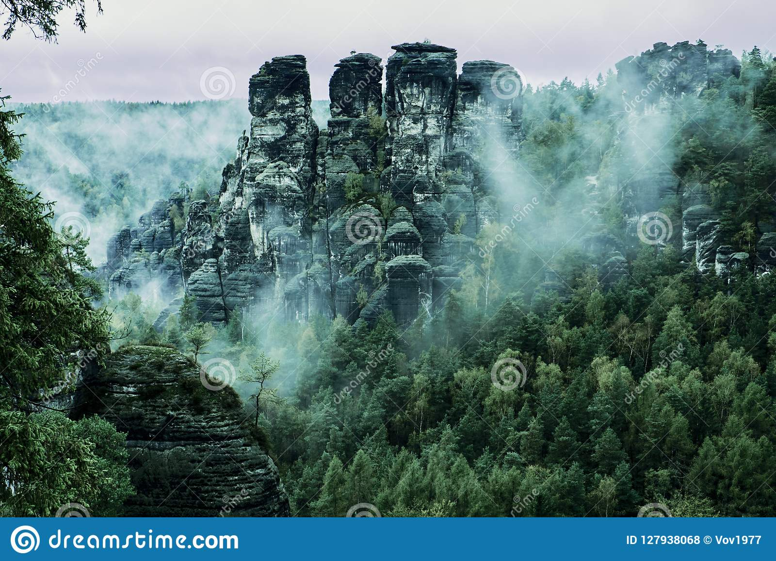 Bastei rock formations, Saxon Switzerland National Park, Germany. Misty landscape with fir forest in hipster vintage retro style
