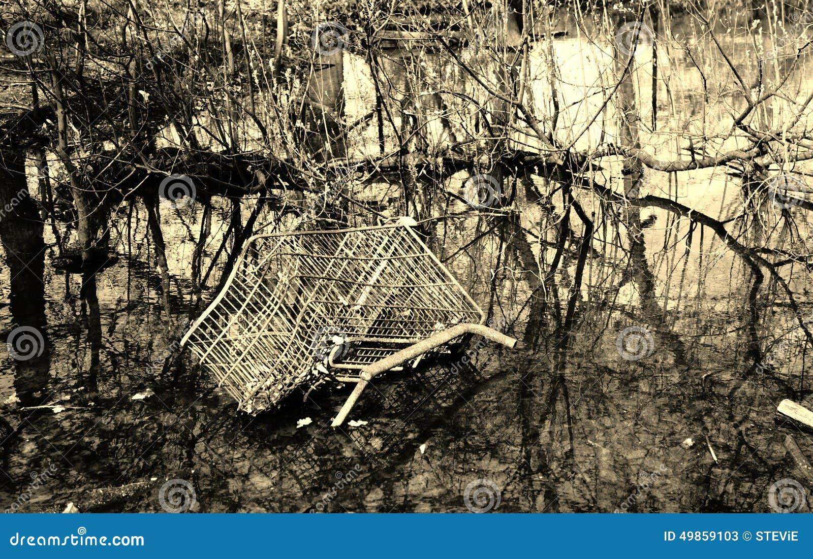 Basura de la carretilla de las compras