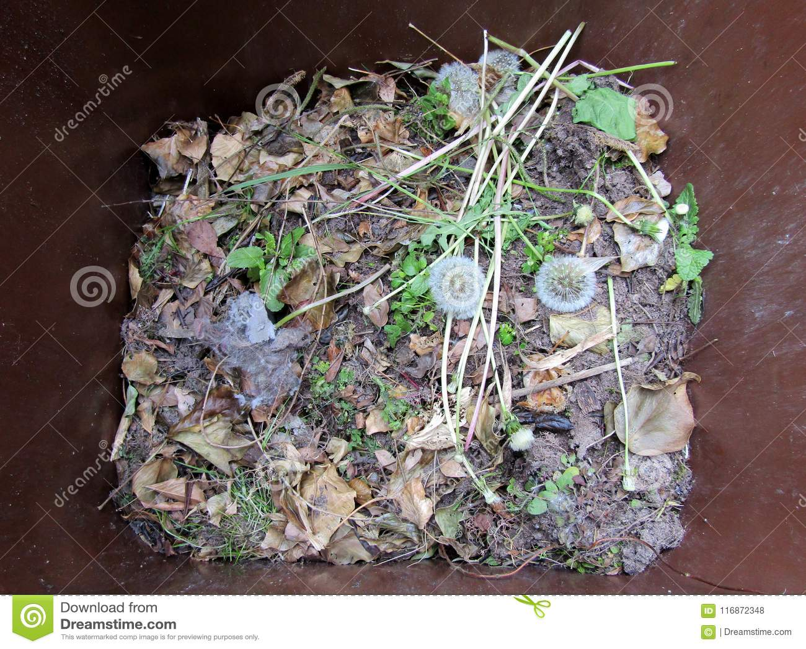 Basura del jardín en un compartimiento marrón
