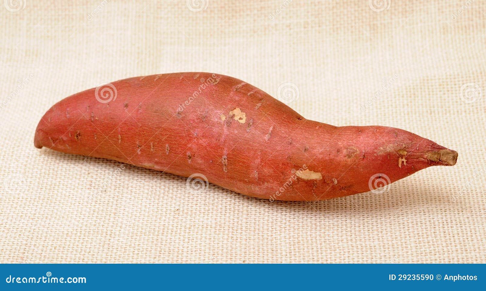 Download Batatas doces foto de stock. Imagem de tuber, harriet - 29235590