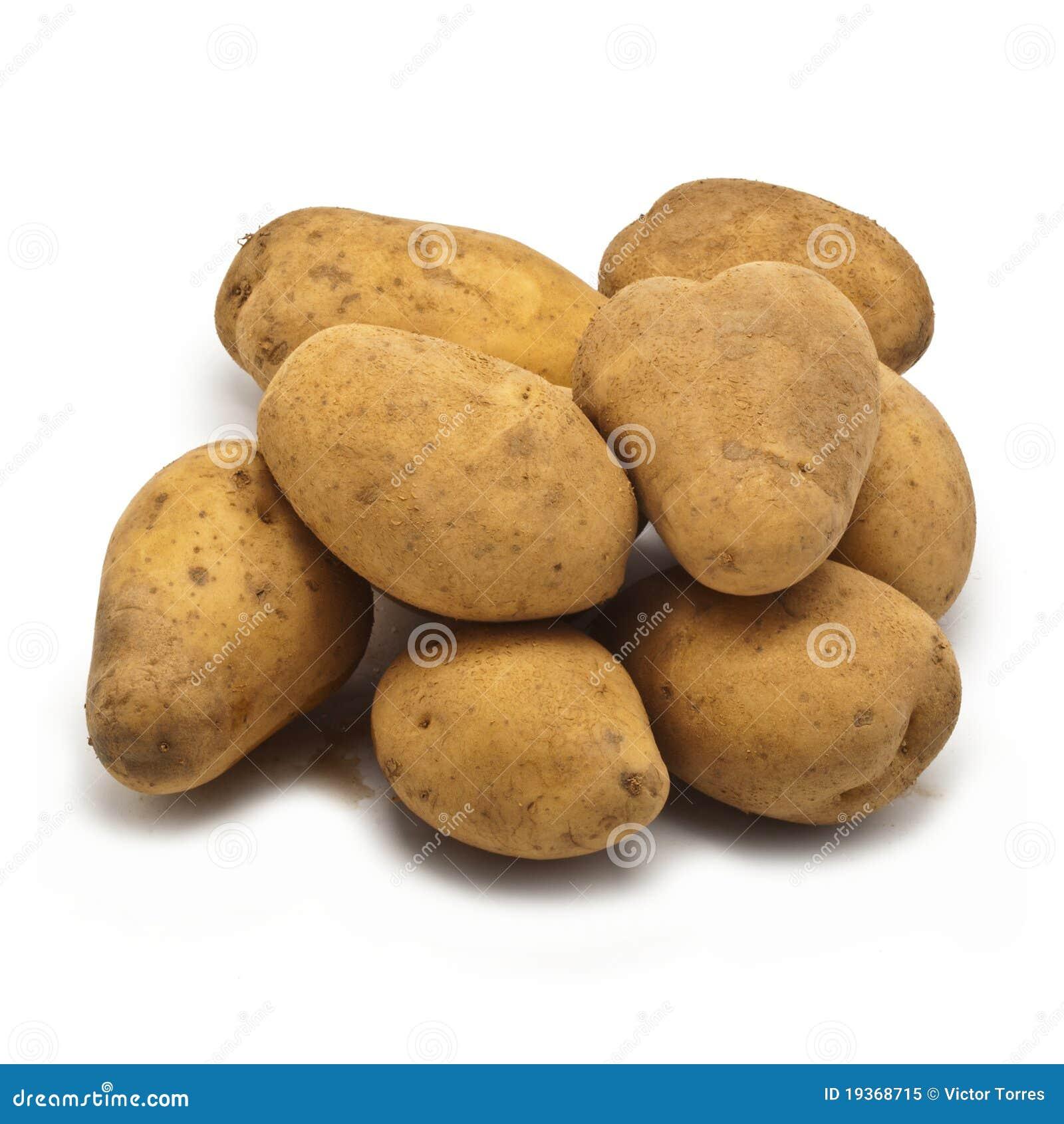 Batatas recentemente colhidas