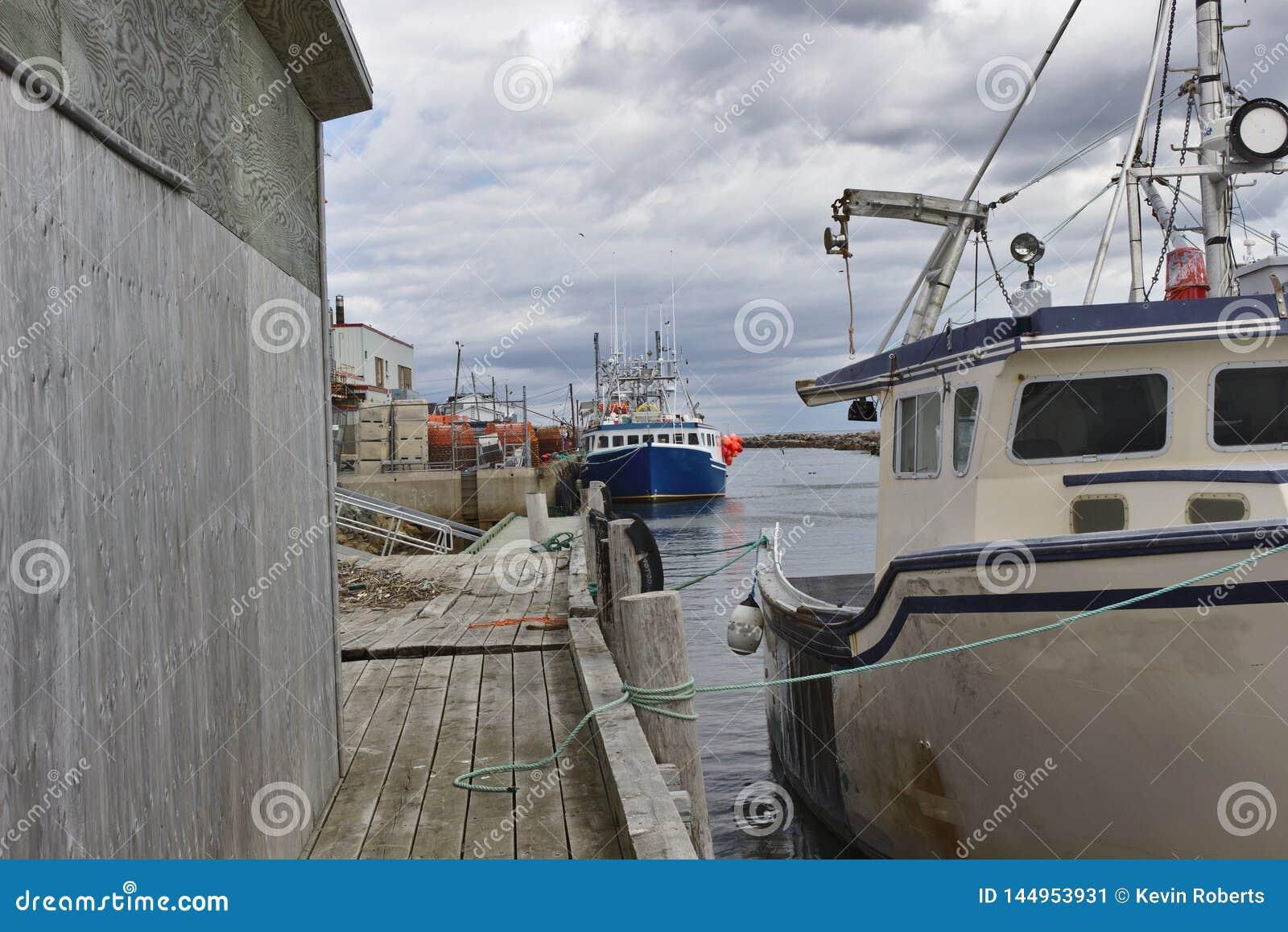 Bateau de pêche dans le port 3123 A
