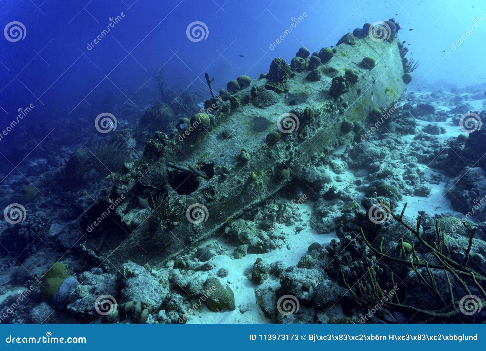 Bateau submergé avec le corail