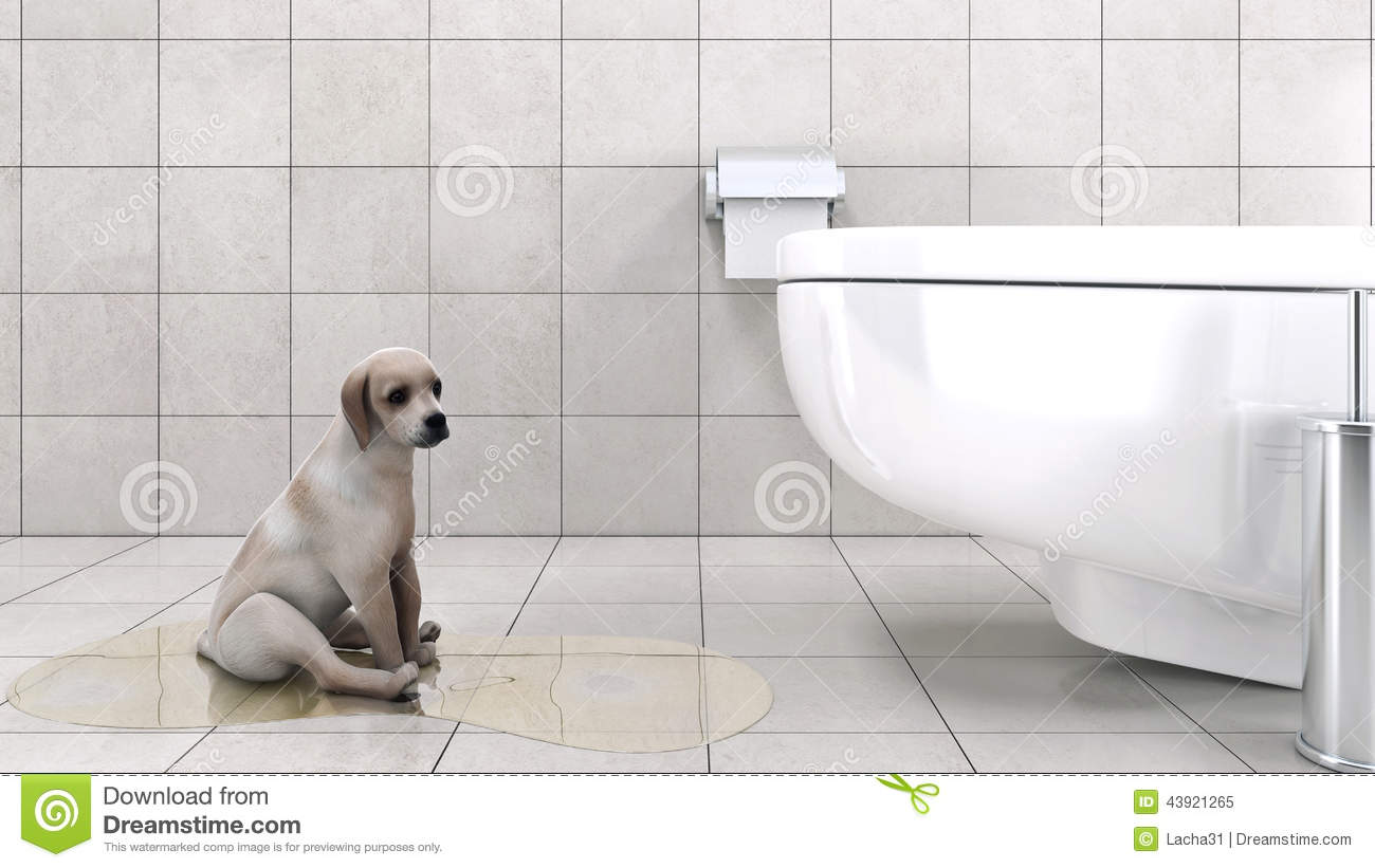 Bathroom With Dog Stock Illustration Image 43921265
