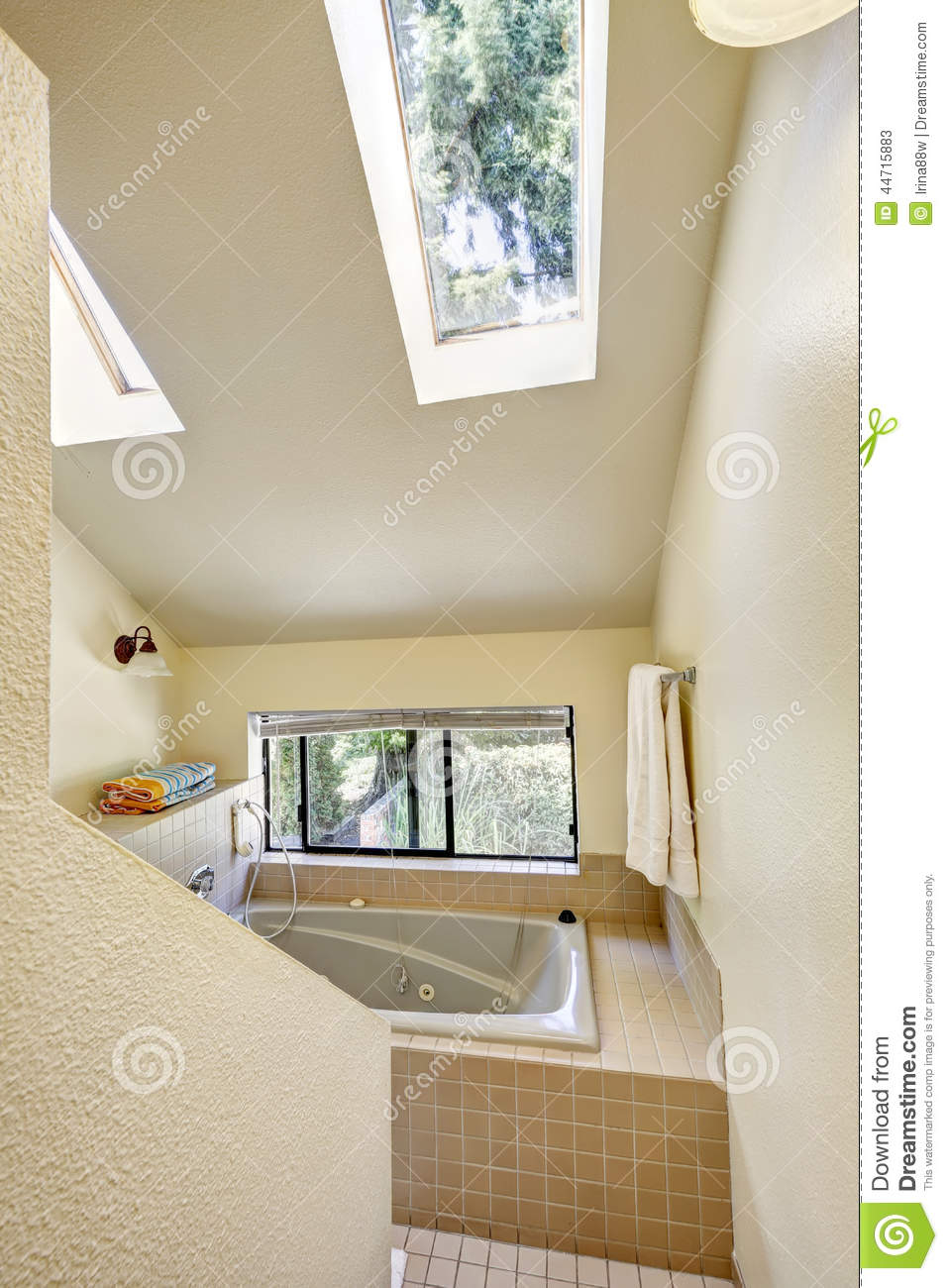 Bathroom With High Vaulted Ceiling And Skylight Stock Image