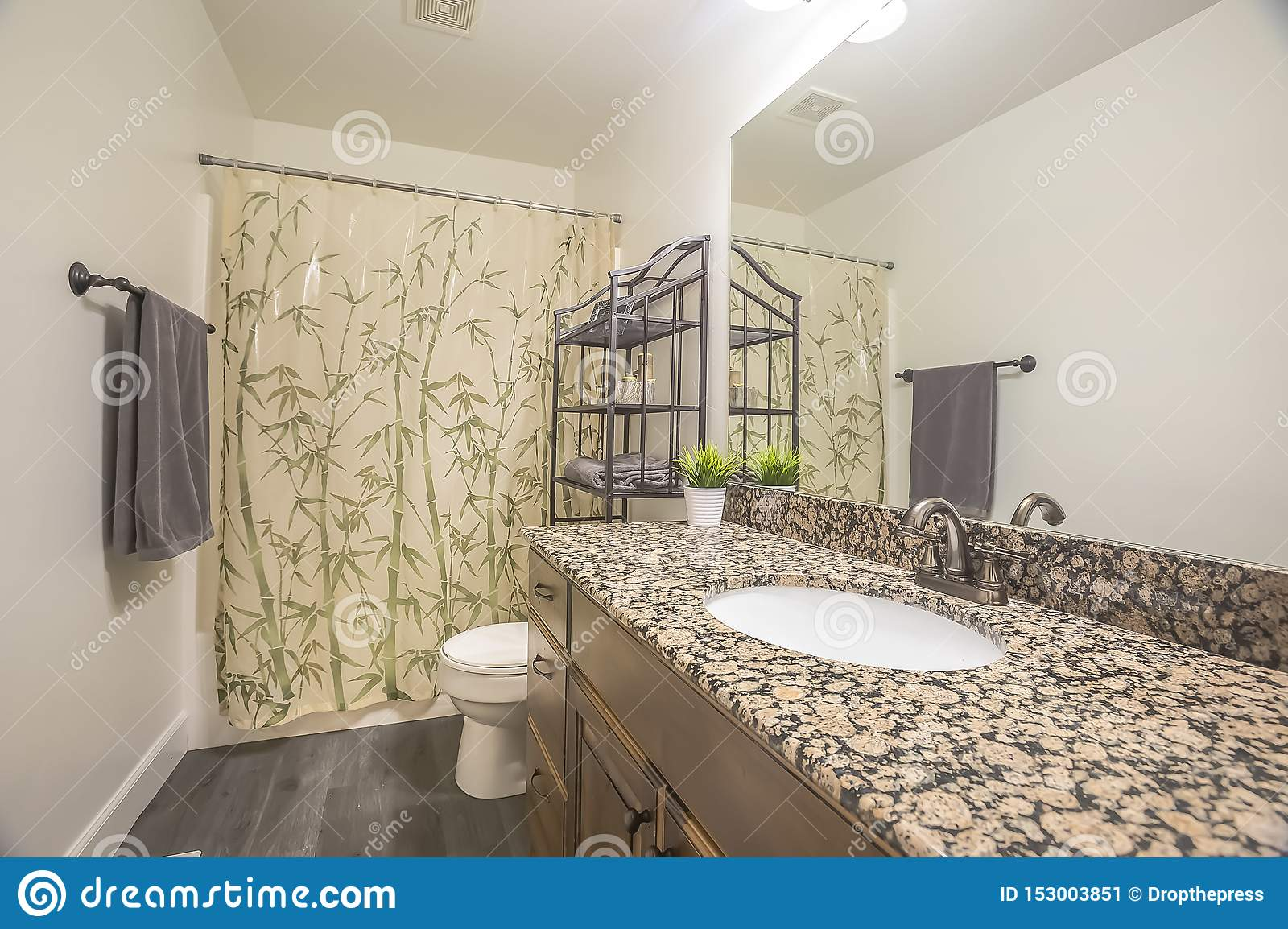 Bathroom Interior Of A Home With Gray Wood Floor And White Wall Stock Image Image Of Wall Architecture 153003851