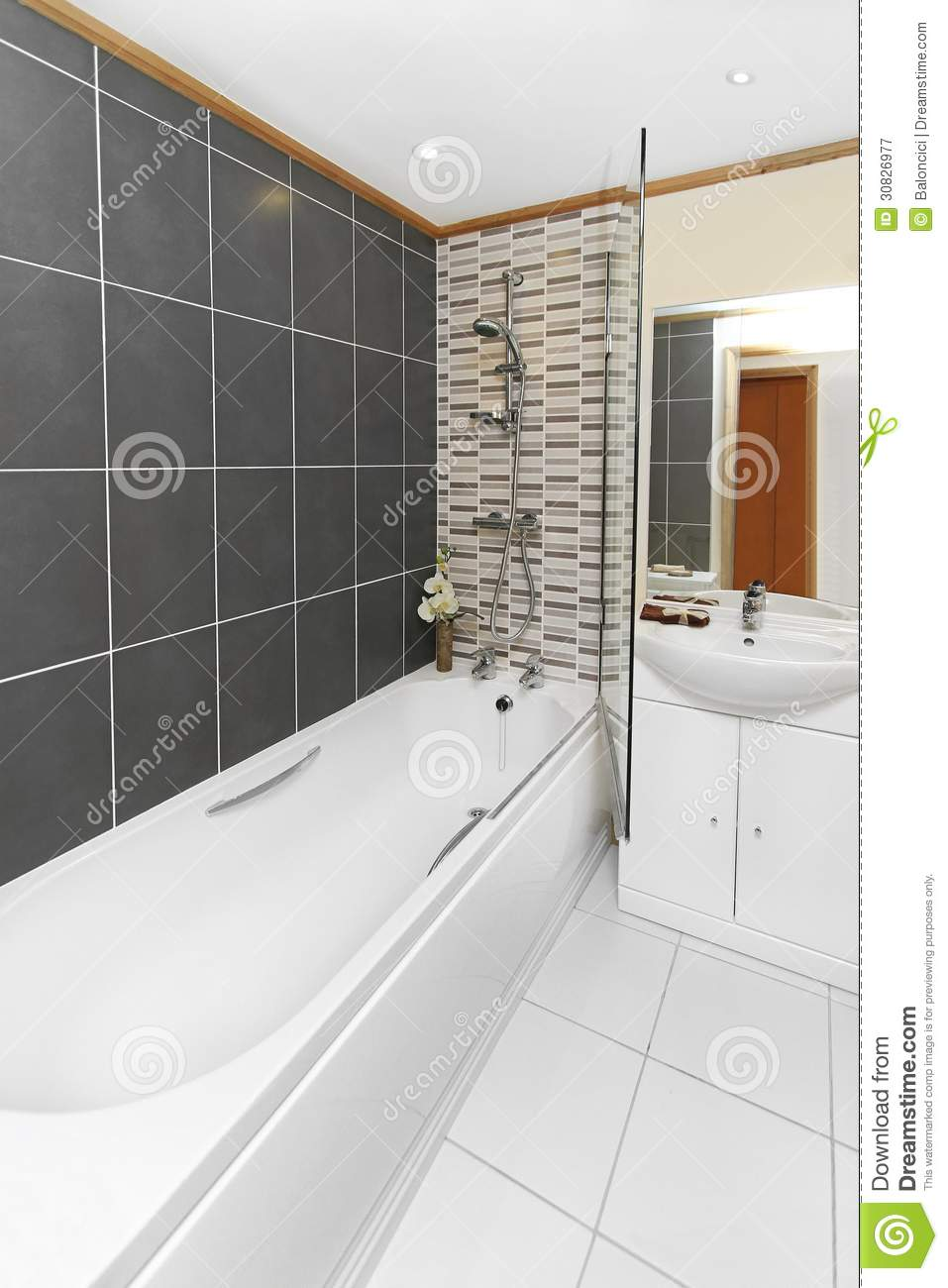 Bathroom Royalty Free Stock Photography Image 30826977