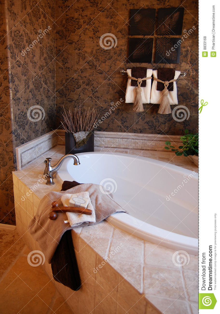 Bathroom in new model home royalty free stock photos for Model home bathroom photos
