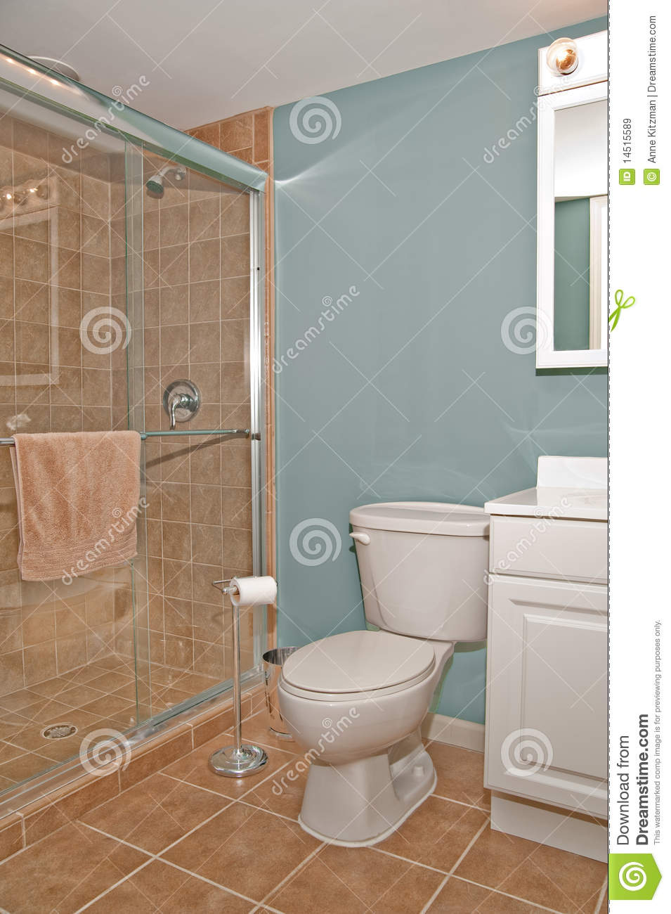 Bathroom Toilet And Shower Stall Stock Image - Image of interior ...
