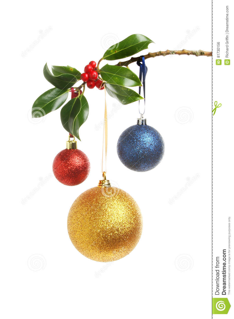 4a4983ab2daf Red, gold and blue glitter Christmas baubles hanging from a Holly branch isolated  against white. More similar stock images