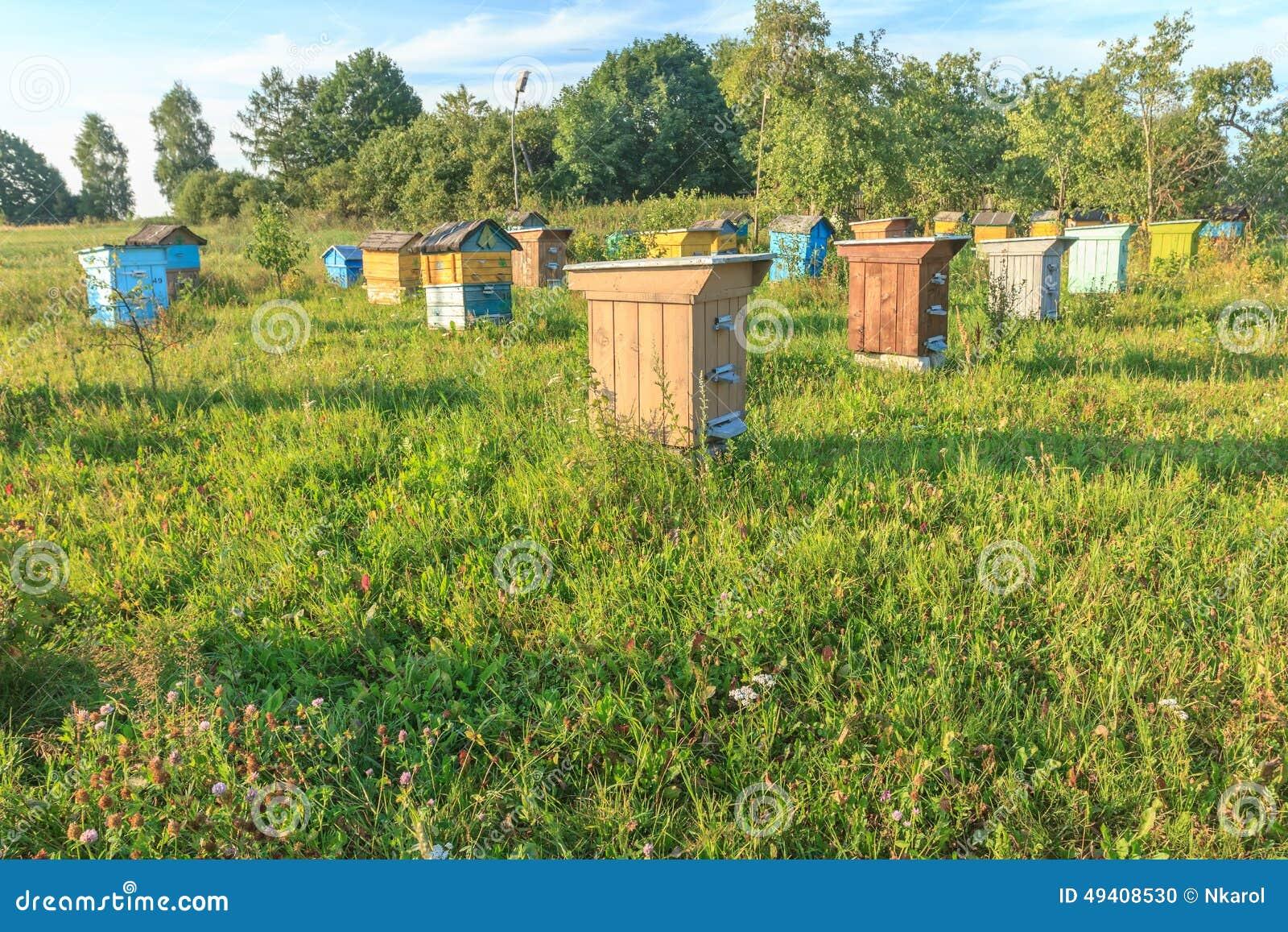Download Bauernhofbienenhaus Mit Mehrfarben-beehouses Stockfoto - Bild von honig, frech: 49408530