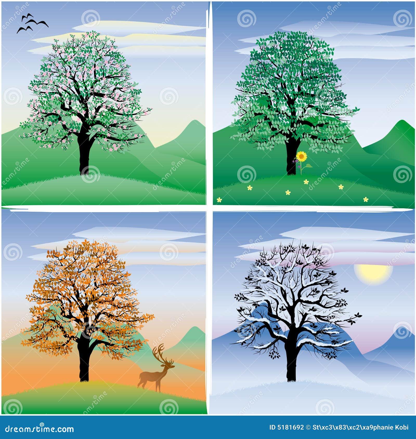 baum stock abbildung illustration von herbst winter. Black Bedroom Furniture Sets. Home Design Ideas