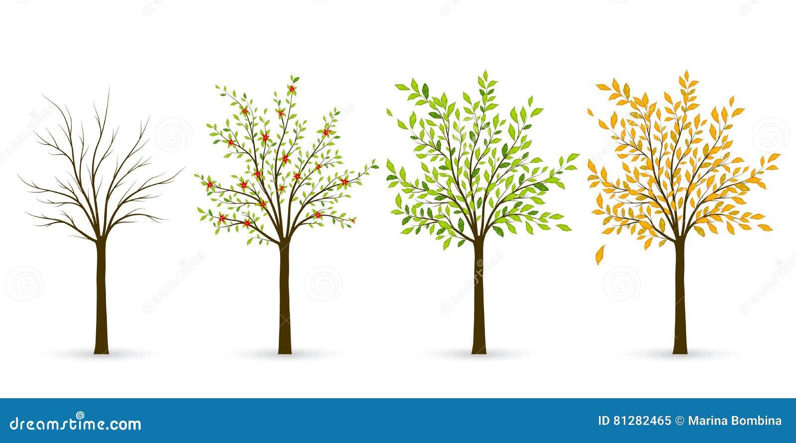 Ausmalbilder Frühling Sommer Herbst Winter : Tolle Malvorlage Des Baumes Ideen Malvorlagen Von Tieren Ngadi Info