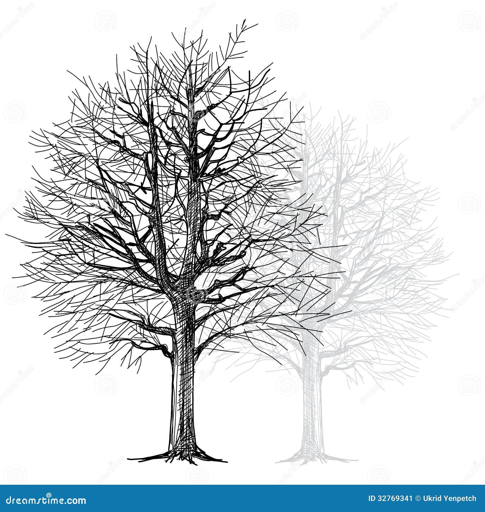 Baum Von Hand Gezeichnet Stockbild Bild 32769341