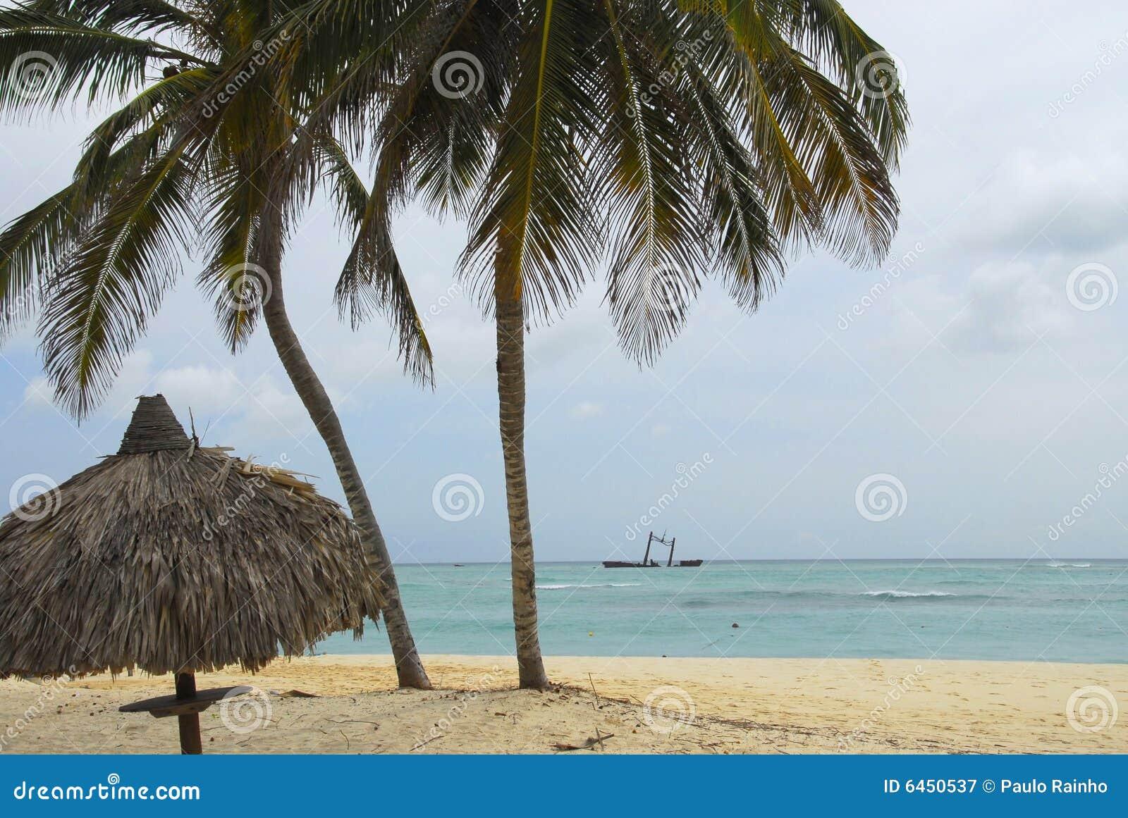 Bavaro cana plażowy punta