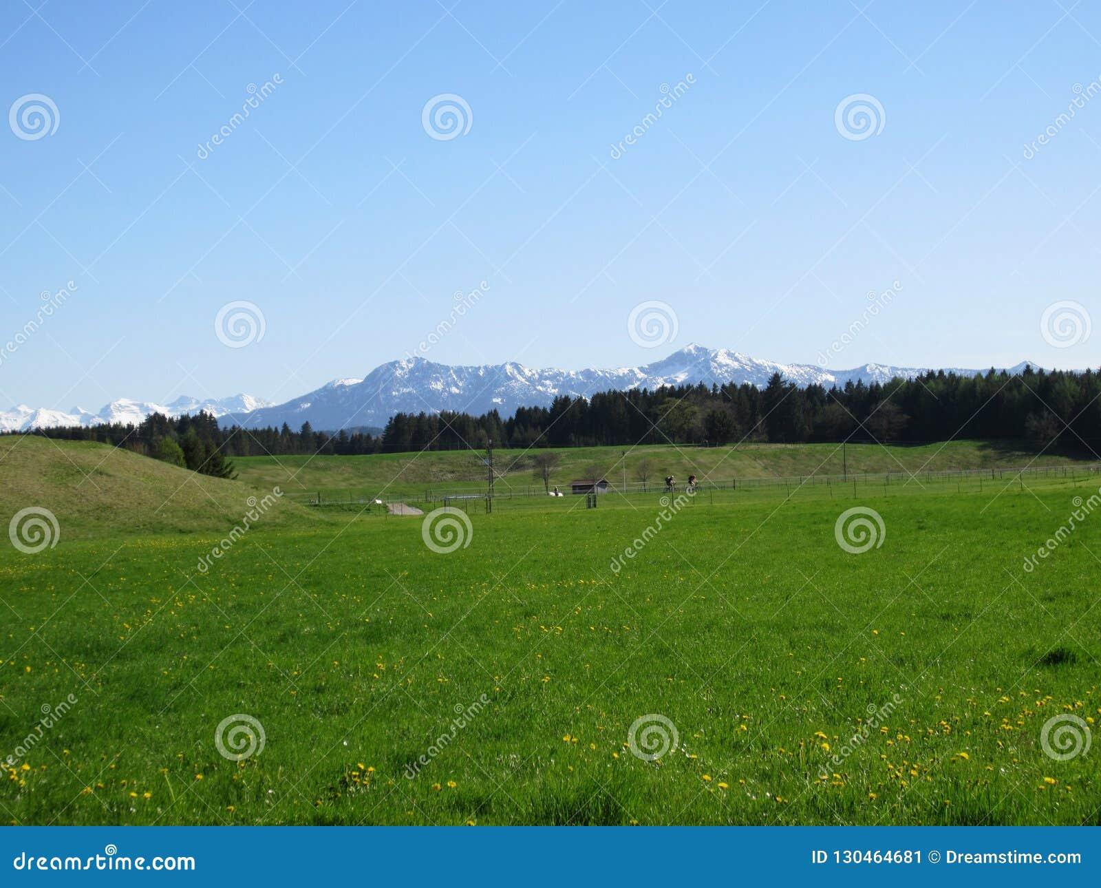 Bawarski krajobraz i Alps zakrywający w śniegu