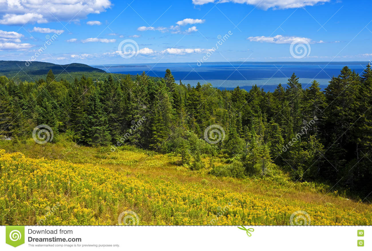 Bay of Fundy-Panorama