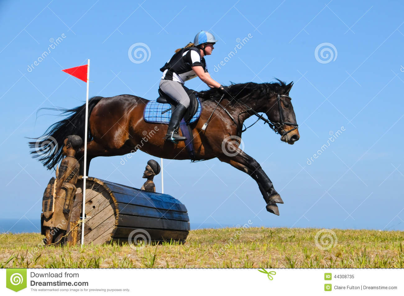 Bay Horse Stretching Over A Barrel Jump At Horse Show Editorial Image Image Of Rider Held 44308735