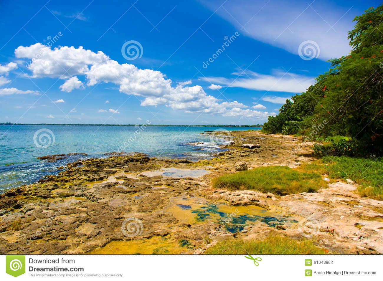 Download The Bay Of Pigs, Playa Giron, Cuba Stock Photo - Image of scenery, green: 61043862
