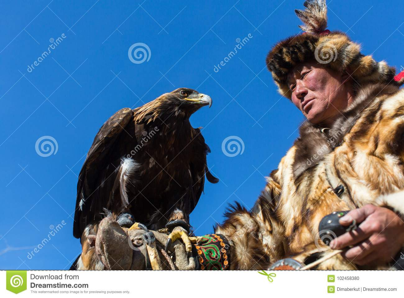 Mongolian Kazakh Eagle Hunter traditional clothing, holding a golden eagle on his arm