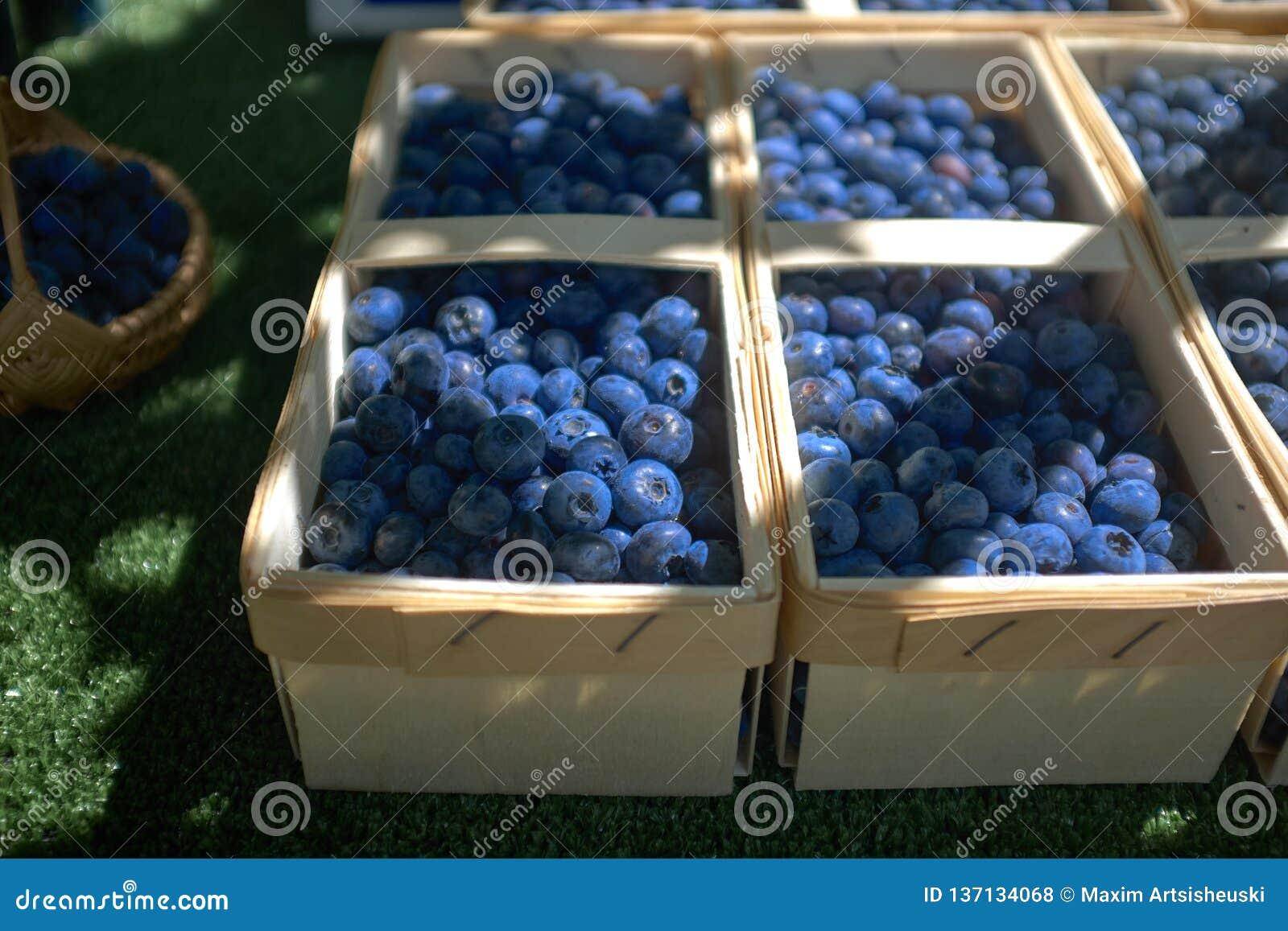 Bayas azules cultivadas en pequeñas cestas en un mercado