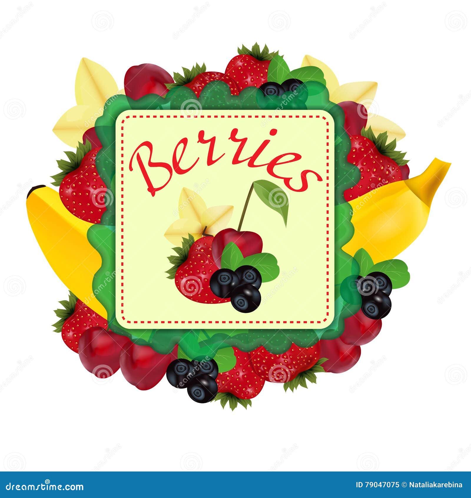 Bayas y fruta label Vector
