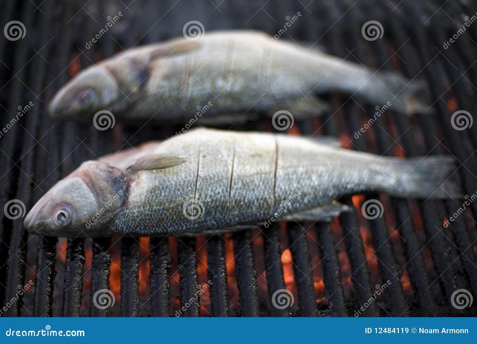 BBQ dos peixes