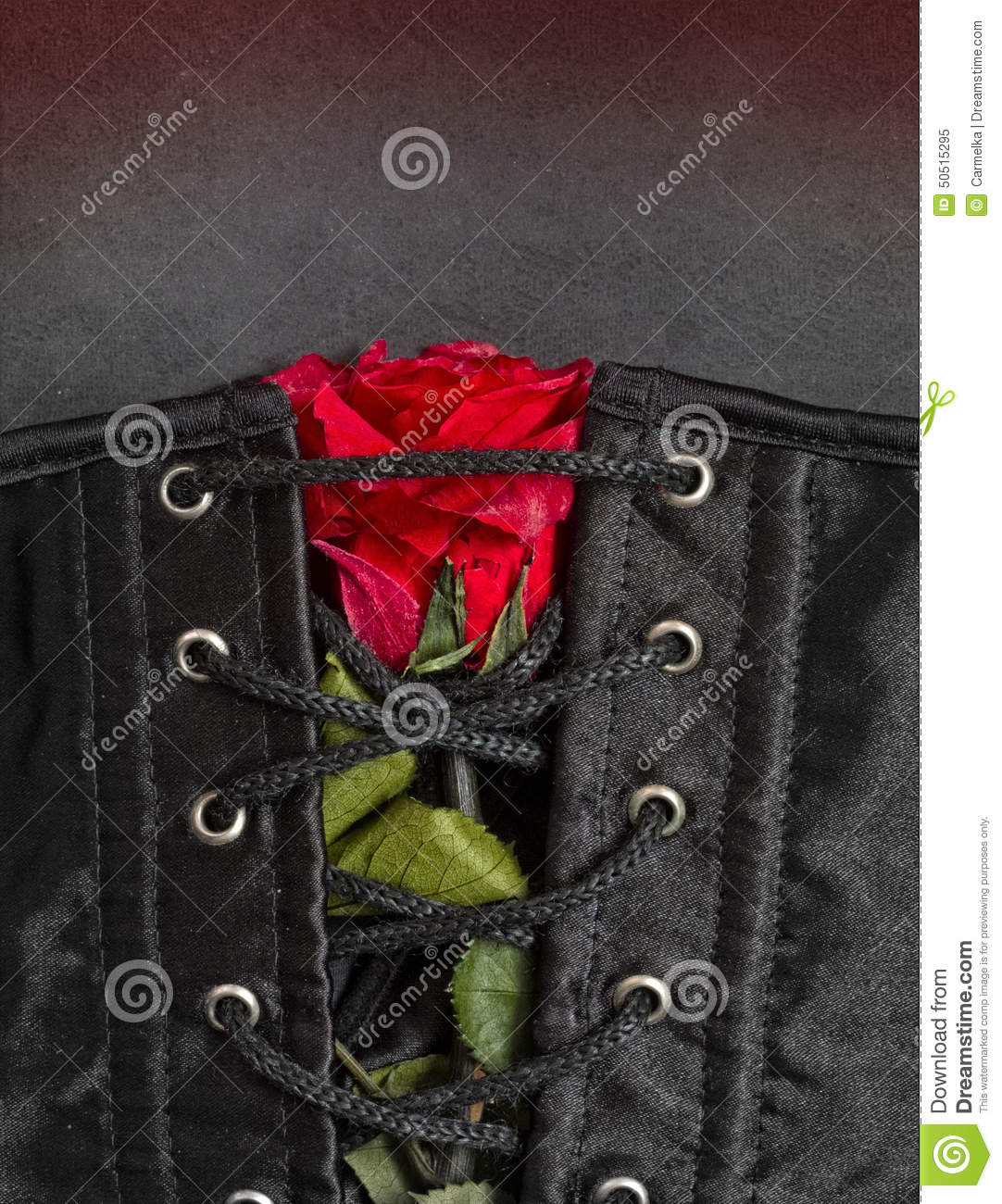 Bdsm gothic fetish corset with rose