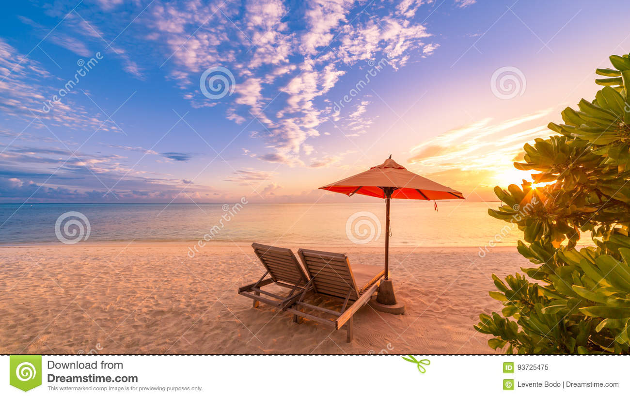 Beach background. Beautiful beach landscape. Tropical nature scene. Palm trees and blue sky. Summer holiday and vacation concept.