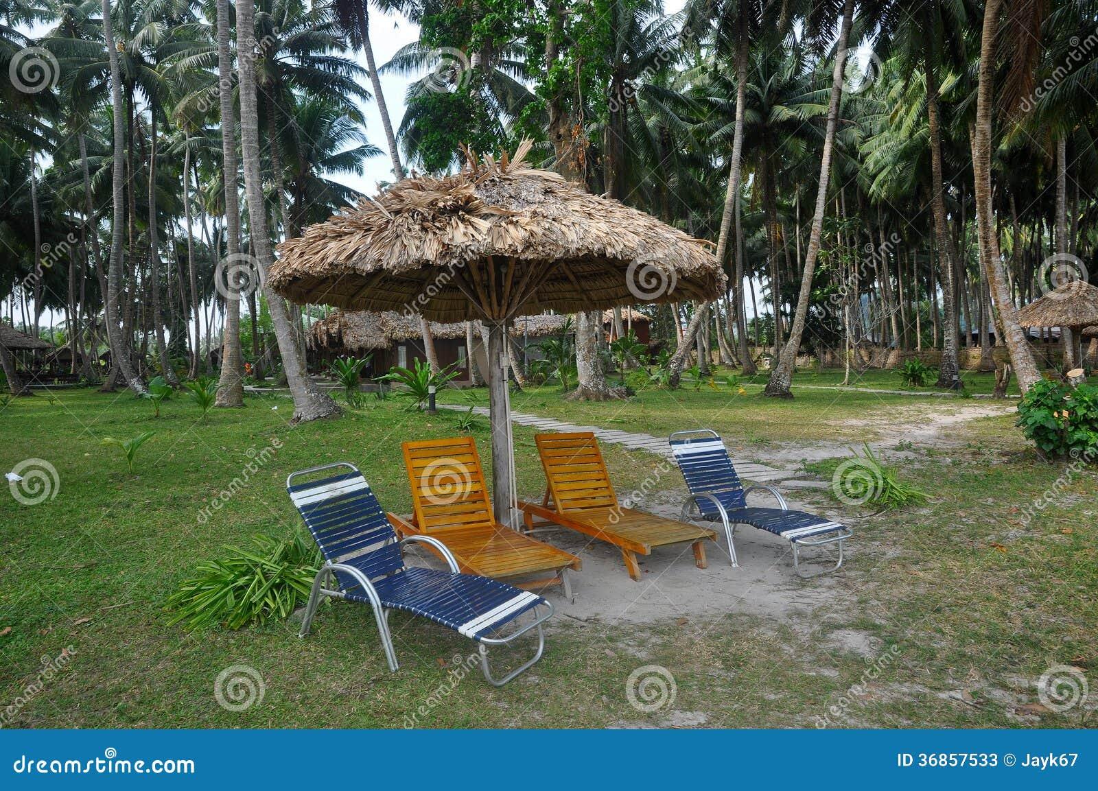 Tropical Beach Chairs Beach Chair Stock Phot...