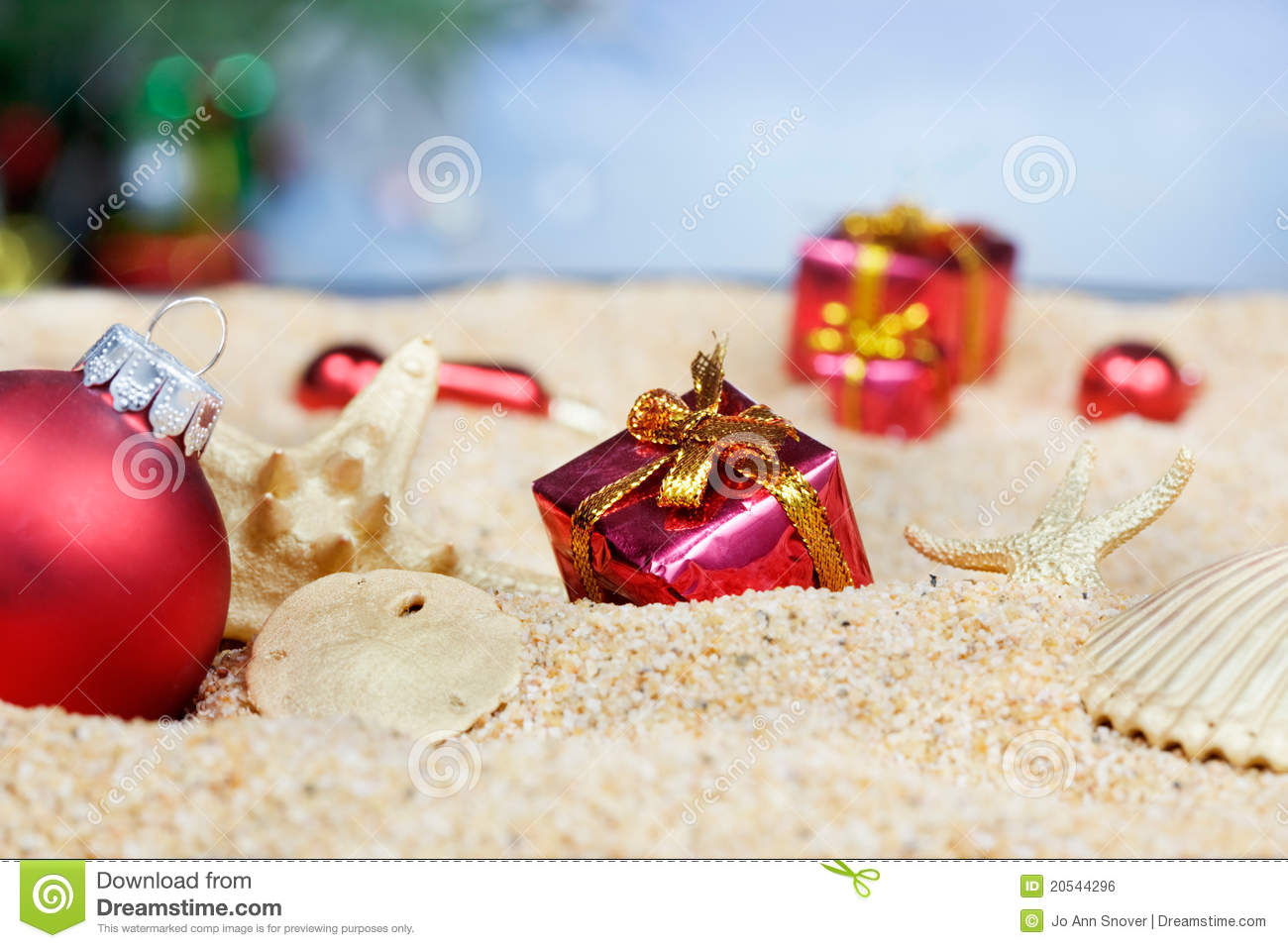 Beach Christmas Ornaments Stock Photo Image Of Shells 20544296