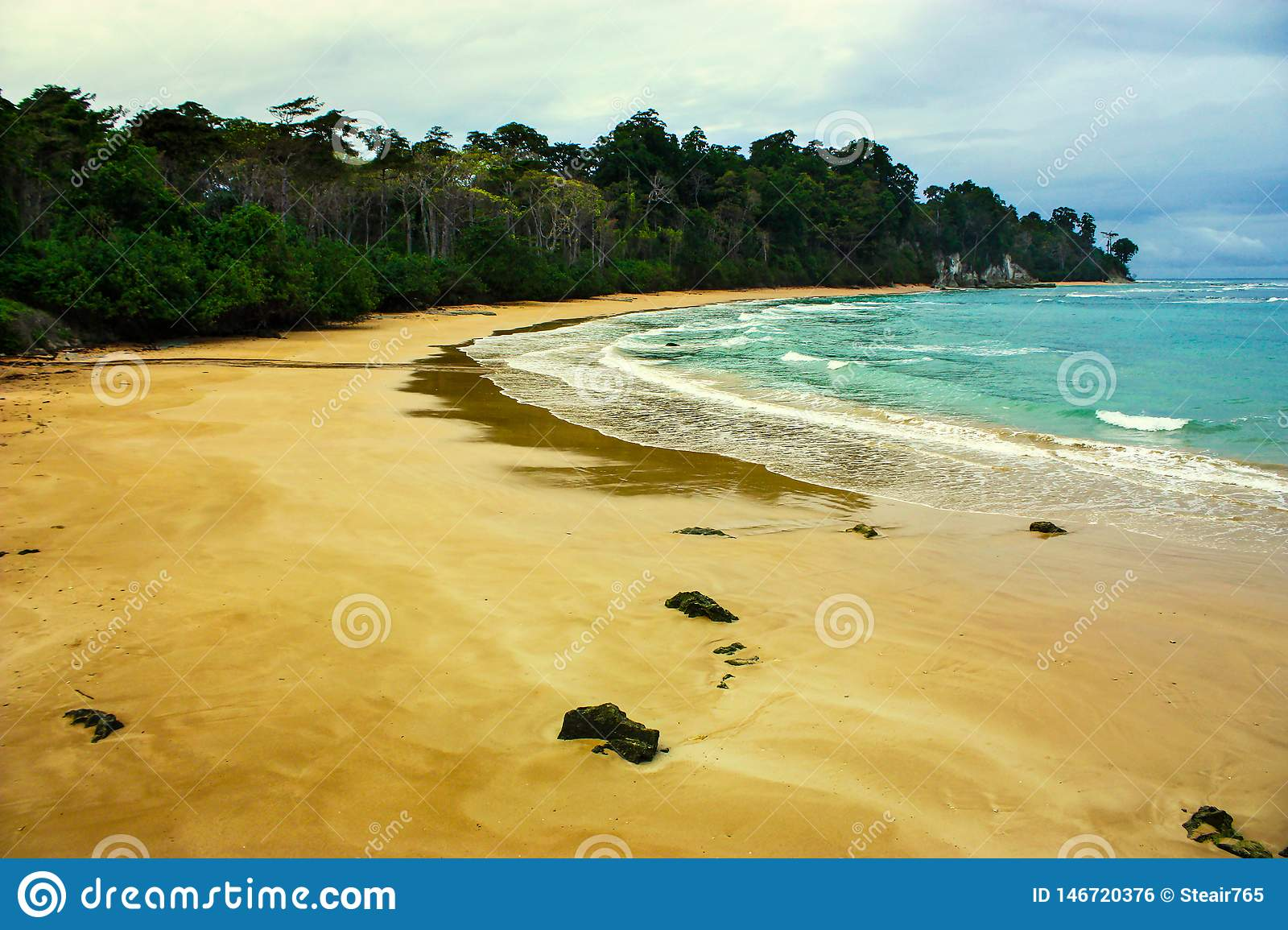 Beach with cloudy sky and lush forest