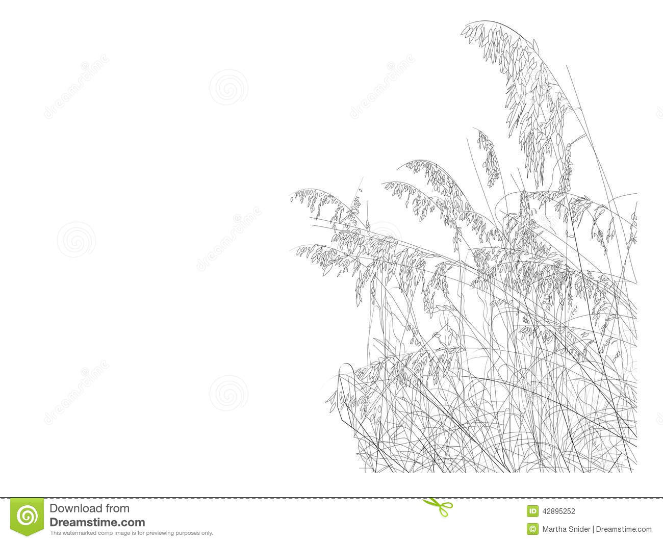 Line Drawing Beach : Beach collection sea oats stock illustration image