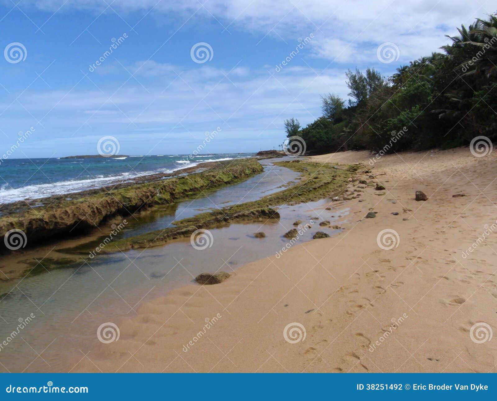 Tide Resort Palm Beach