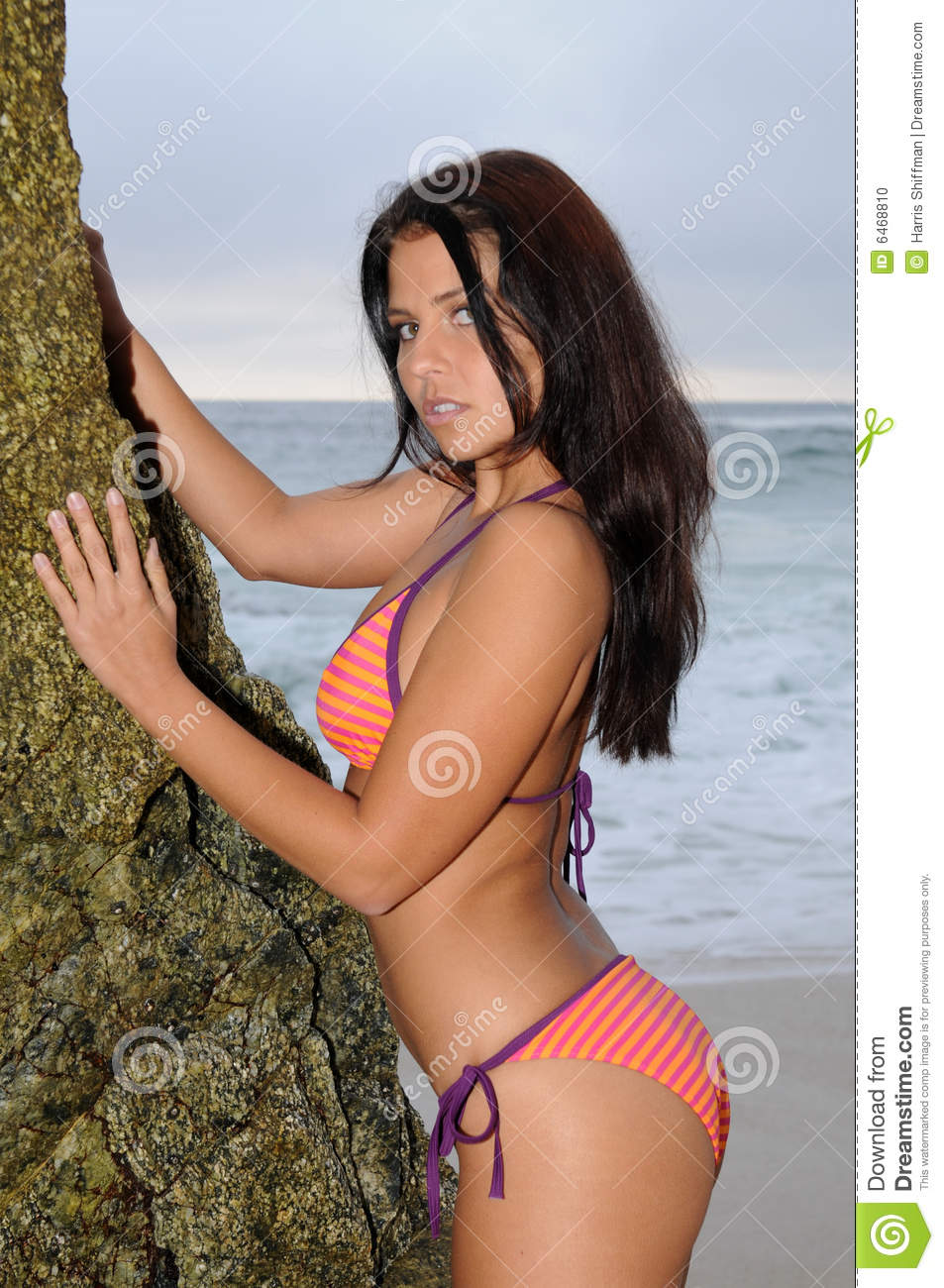 Beach Girl Stock Photo Image Of Swimsuit, Brown, Firm -7493