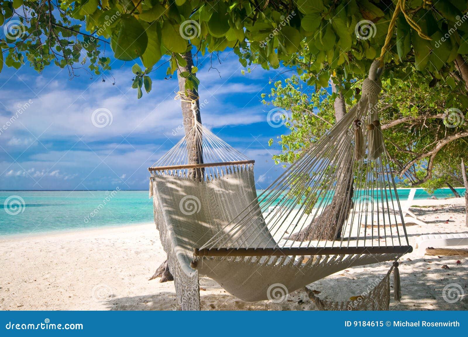Beach Hammock stock image. Image of horizon, caribbean ...