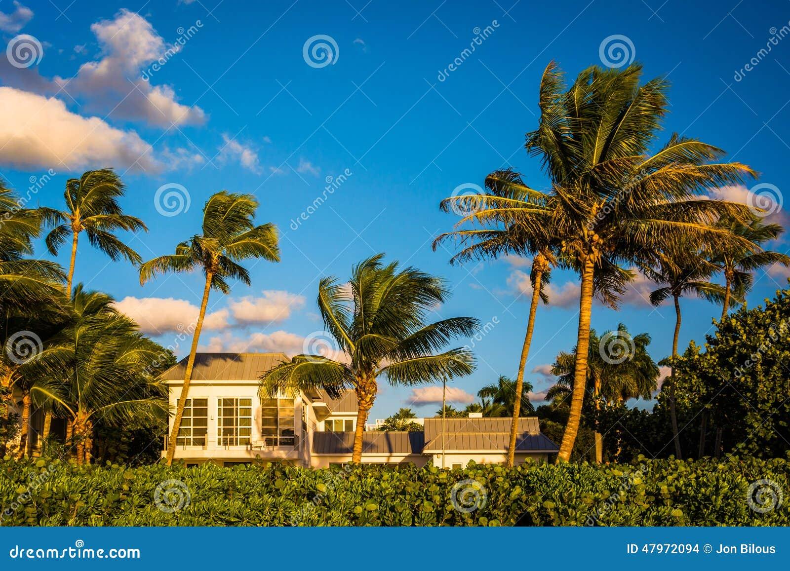 Palm Beach Florida House Prices