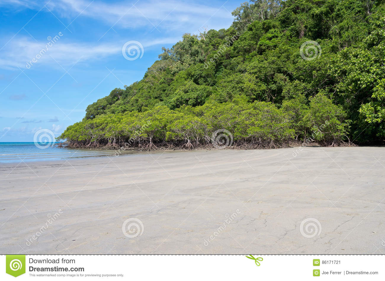Forest and Beach