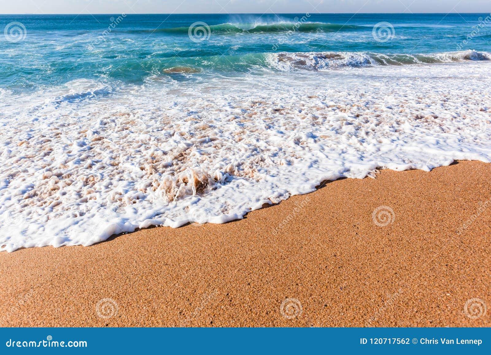 Beach Ocean Shoreline Wash