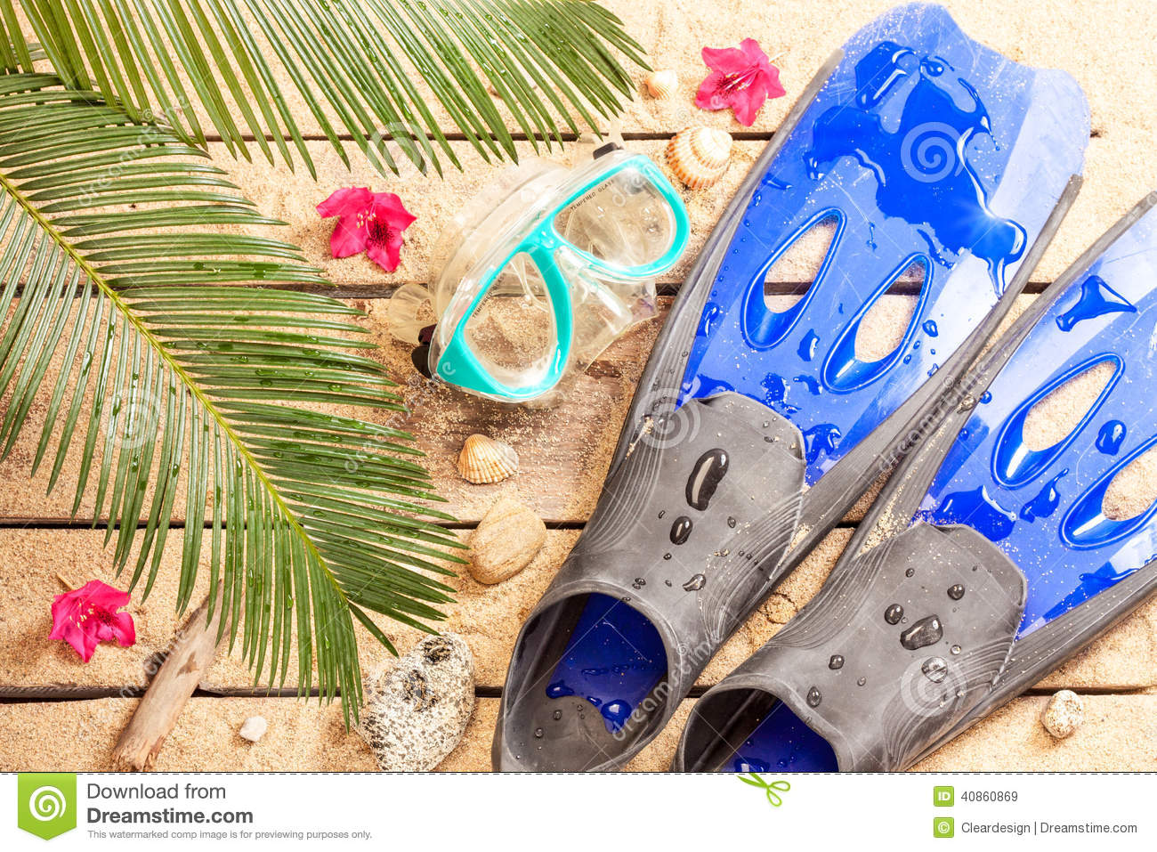 beach goggles  Beach, Palm Tree Leaves, Sand, Fins, Goggles And Snorkel Stock ...