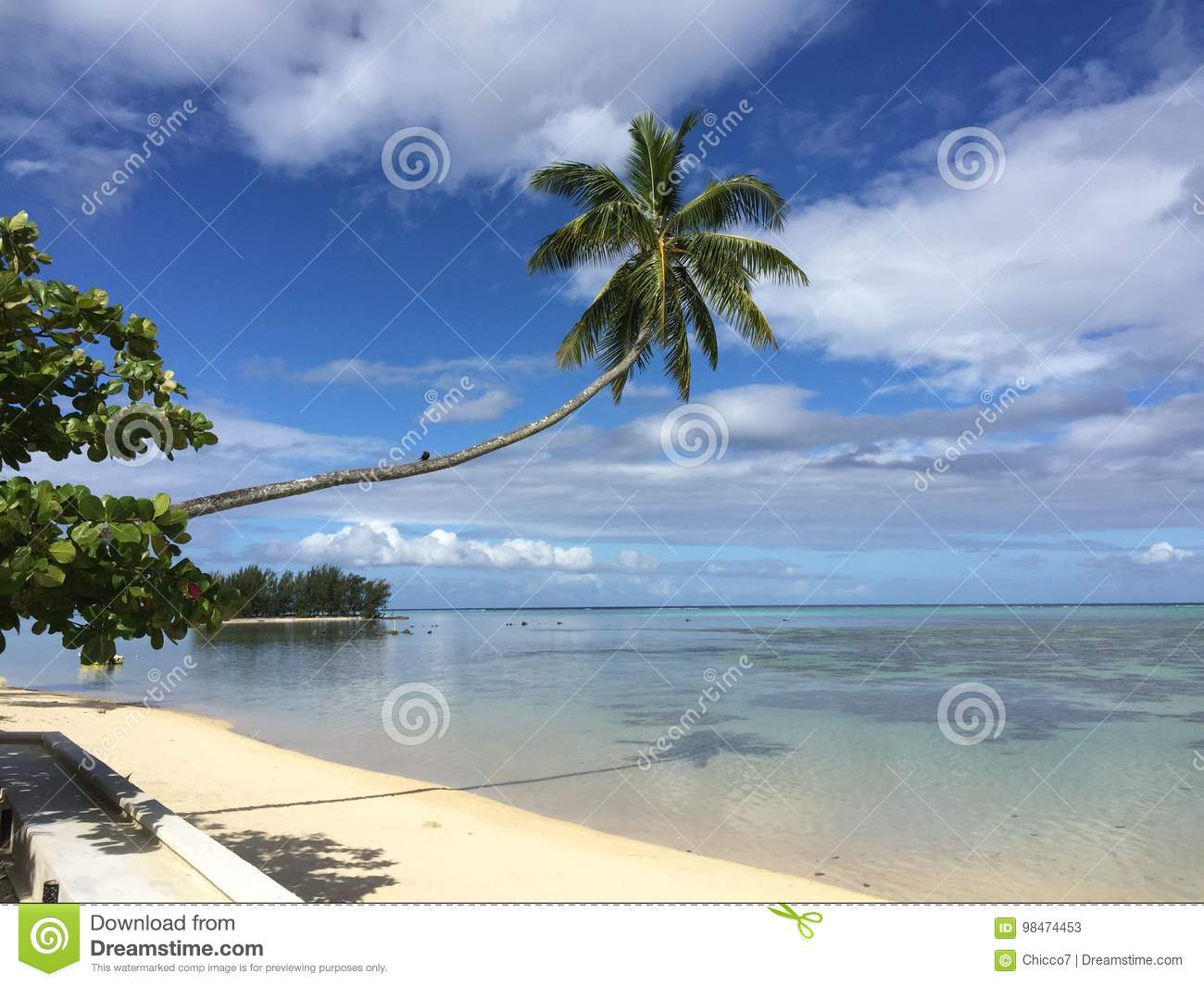 Beach, palms and island from Polynesia