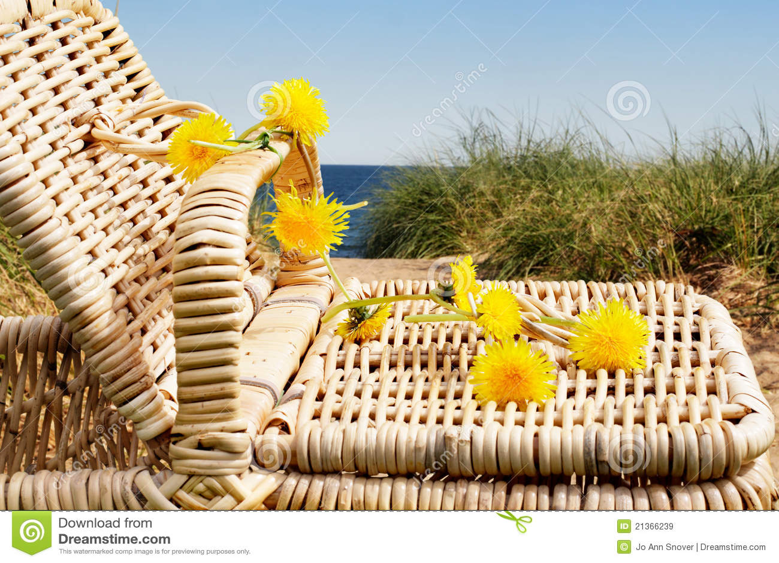 Beach Picnic Royalty F...