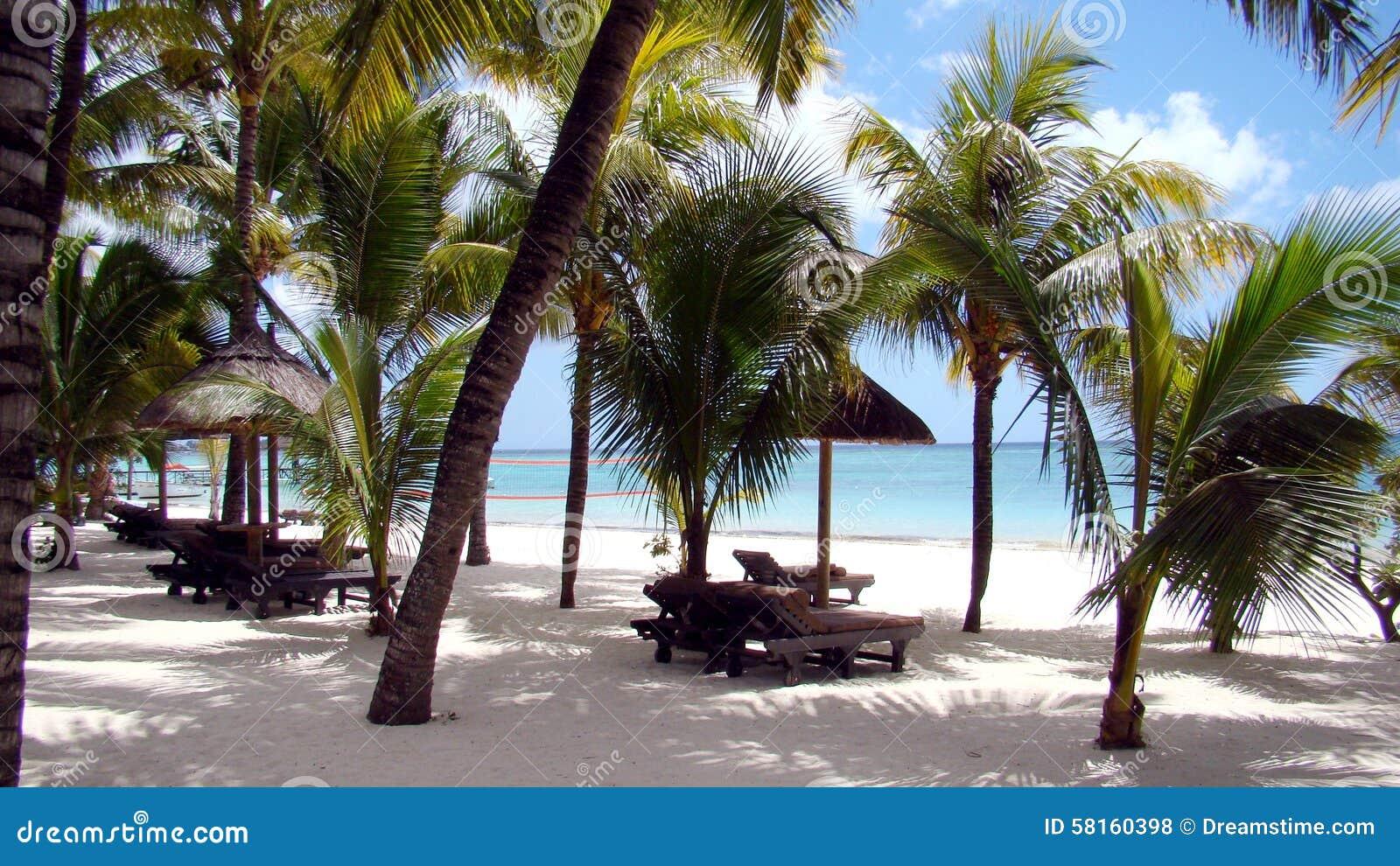 beach at punta cana stock photo image 58160398. Black Bedroom Furniture Sets. Home Design Ideas