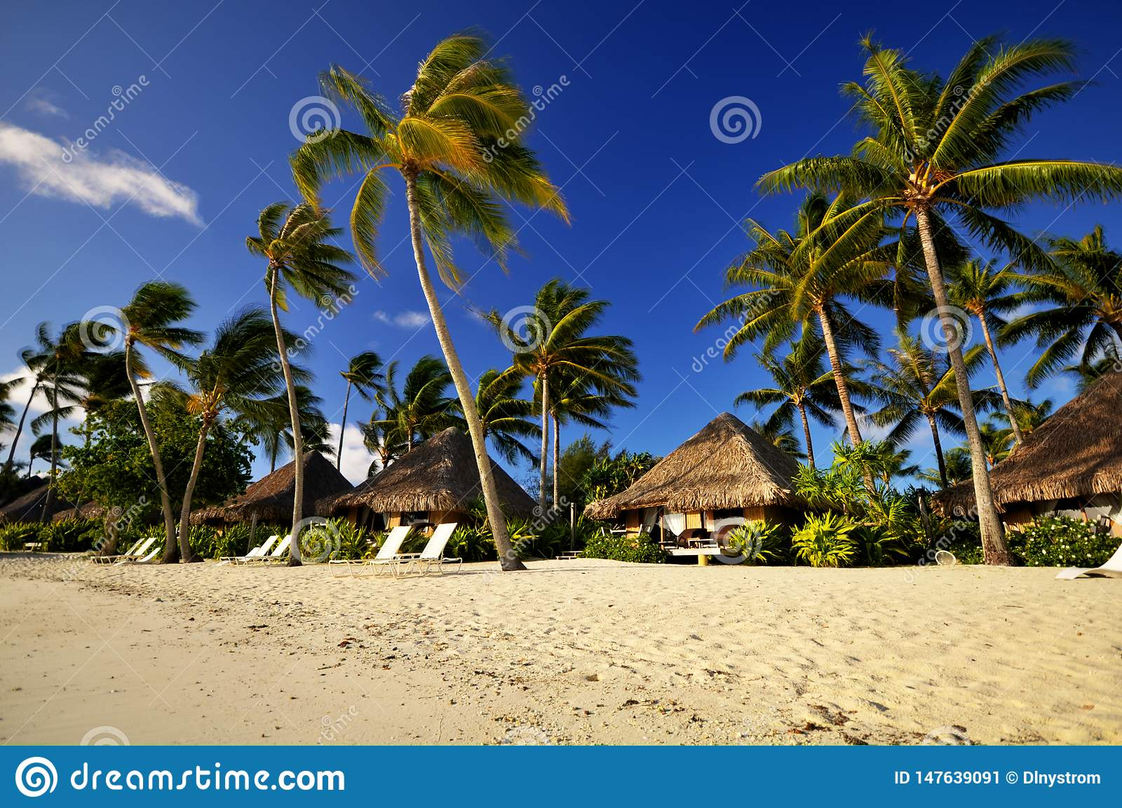 Beach Resort With Bungalows In Bora Bora Stock Image Image